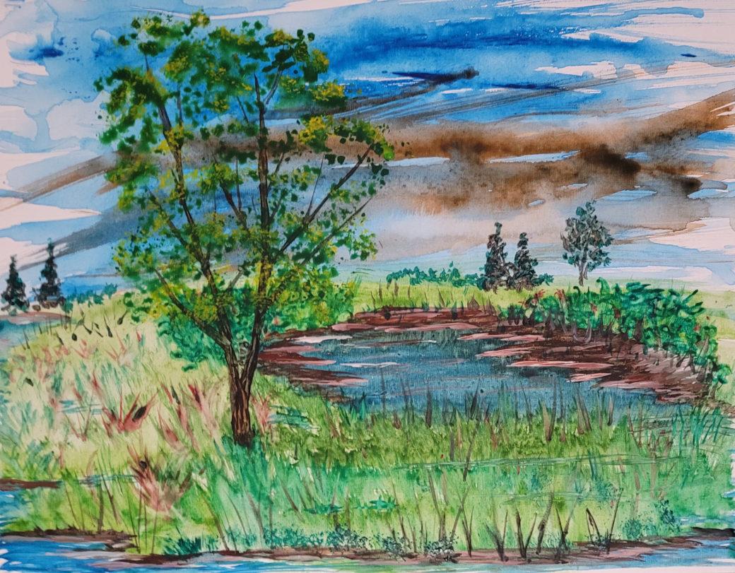 Marshland Watercolor Brian Quinn