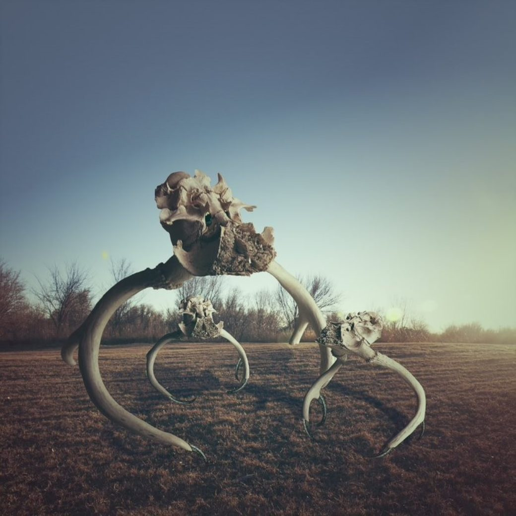 A photo features a large outdoor sculpture made from horned animal skulls standing in a field