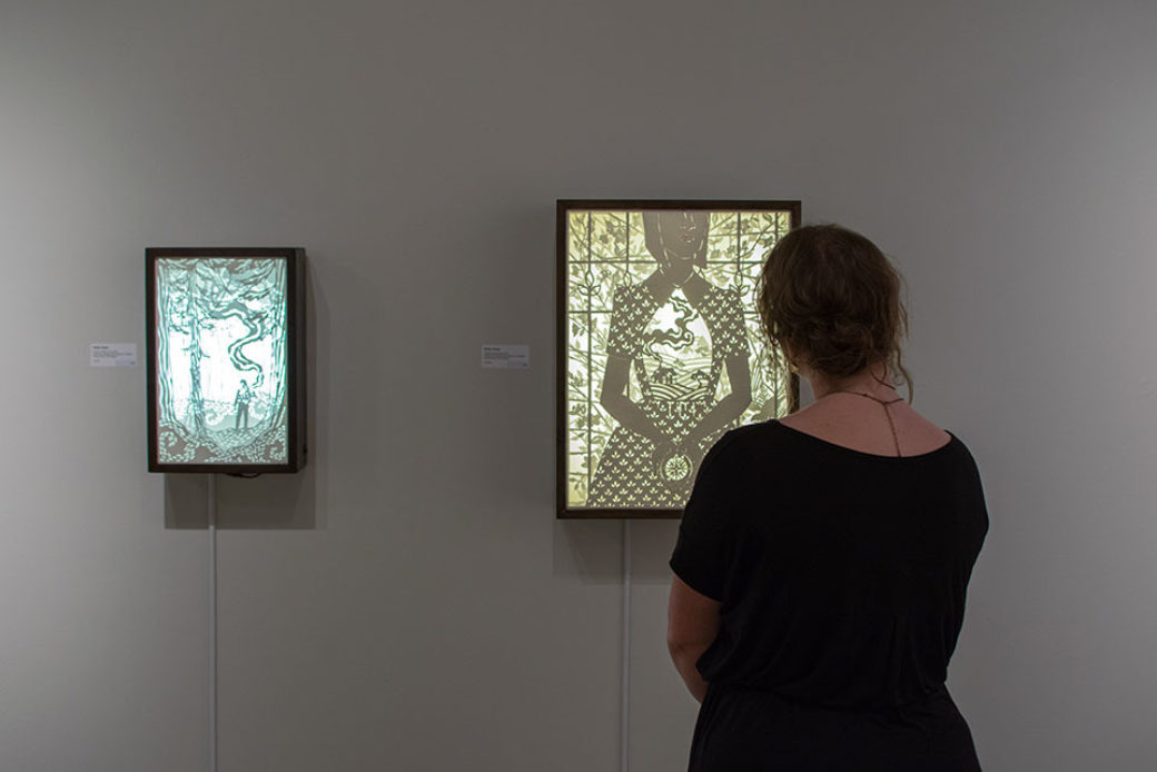 A person with their back to the camera looks at illuminated works on a wall