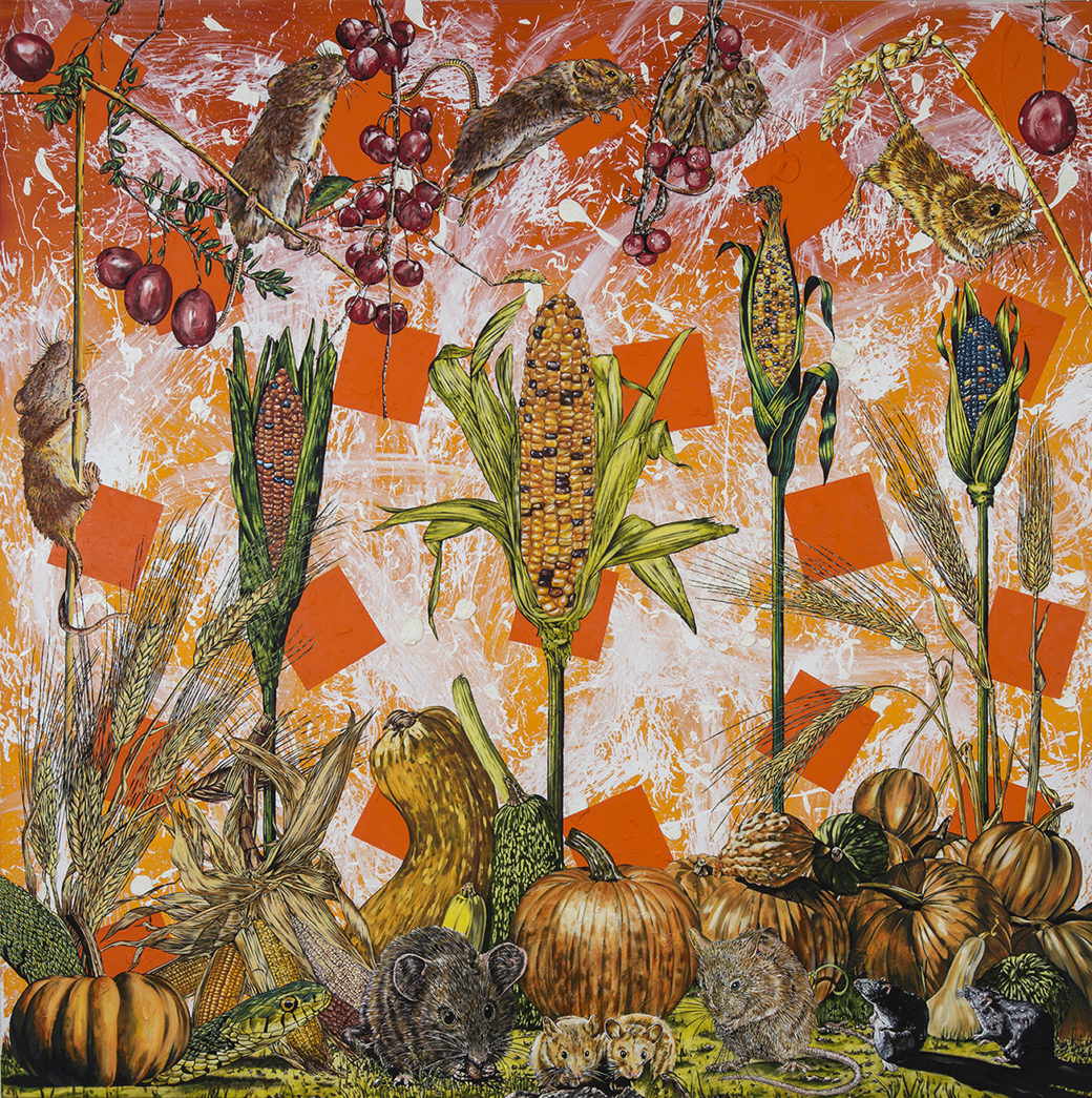 A painting of ears of Indian corn, pumpkins, squash and berries being eaten by mice