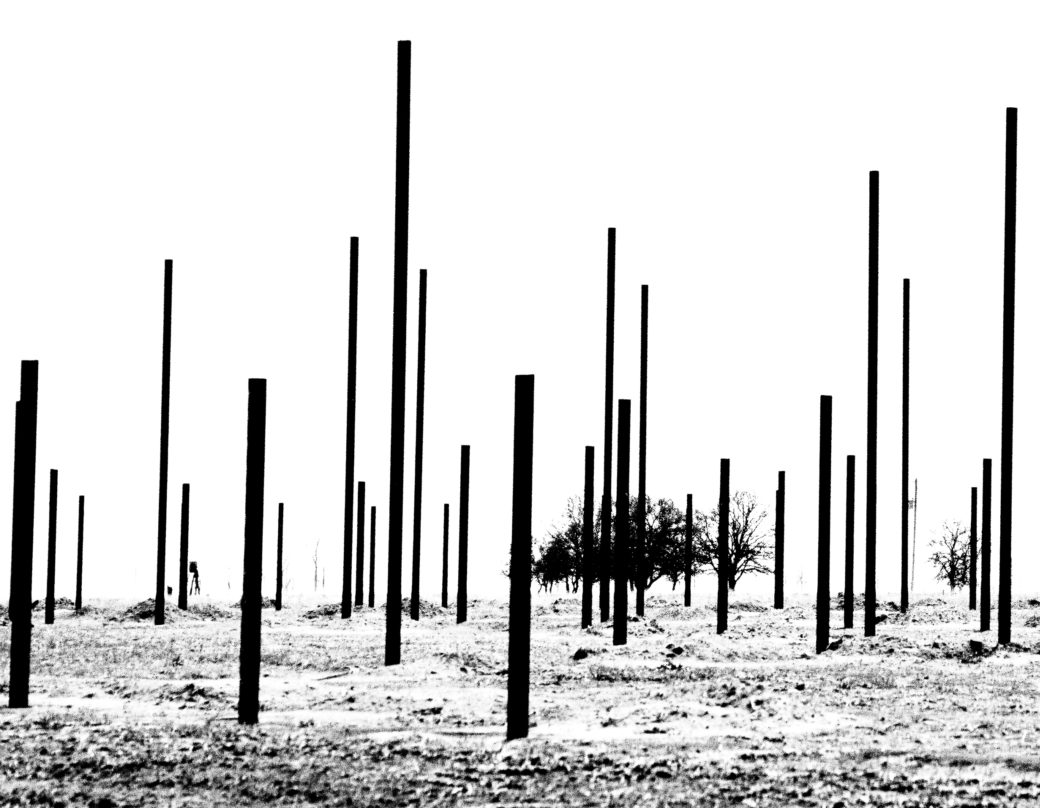 A black-and-white photograph depicts a handful of scrubby trees on an open prairie, with dark poles sticking out from the ground