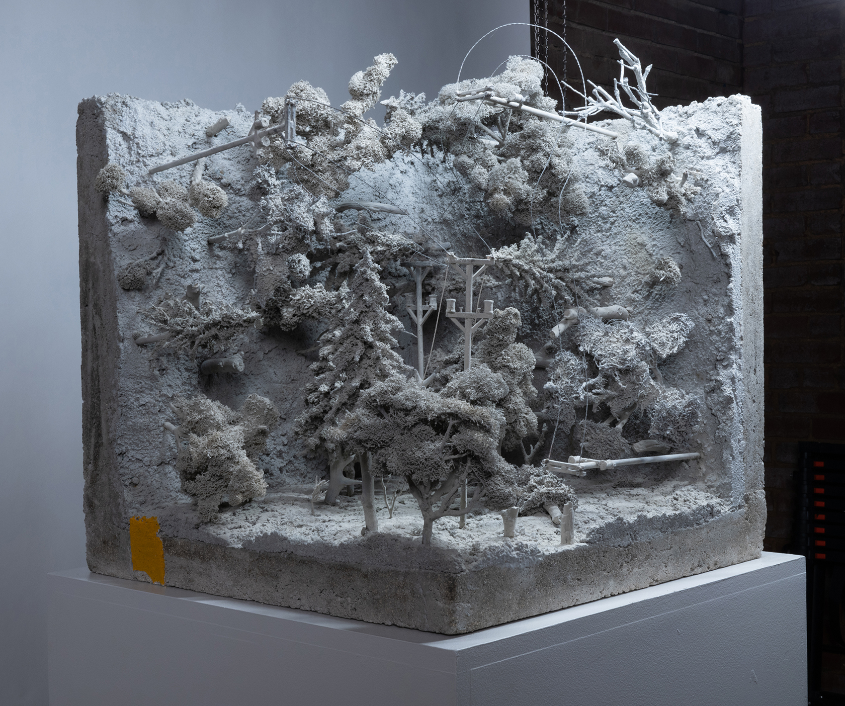 A pale-gray sculpture of a wooded field and electrical lines shows on three interior planes of a cube