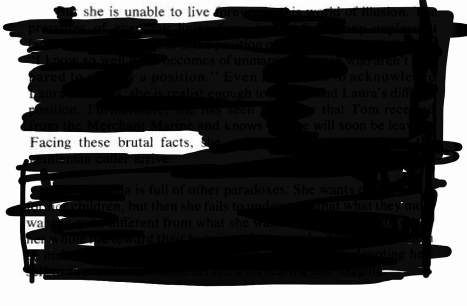 "Text blacked out with the words ""she is unable to live/facing these brutal facts"" left"