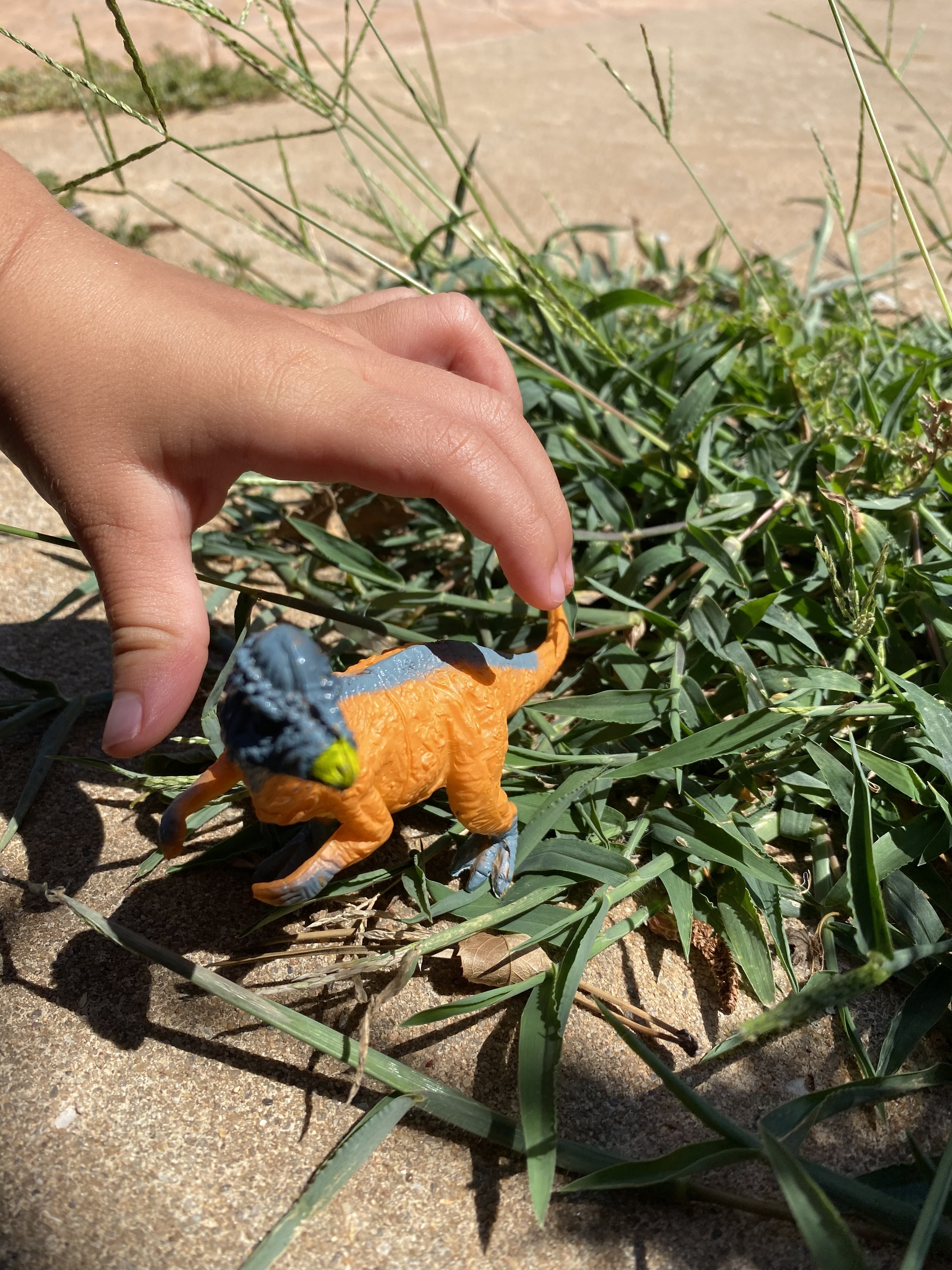 A hand stages a small plastic dinosaur in the grass