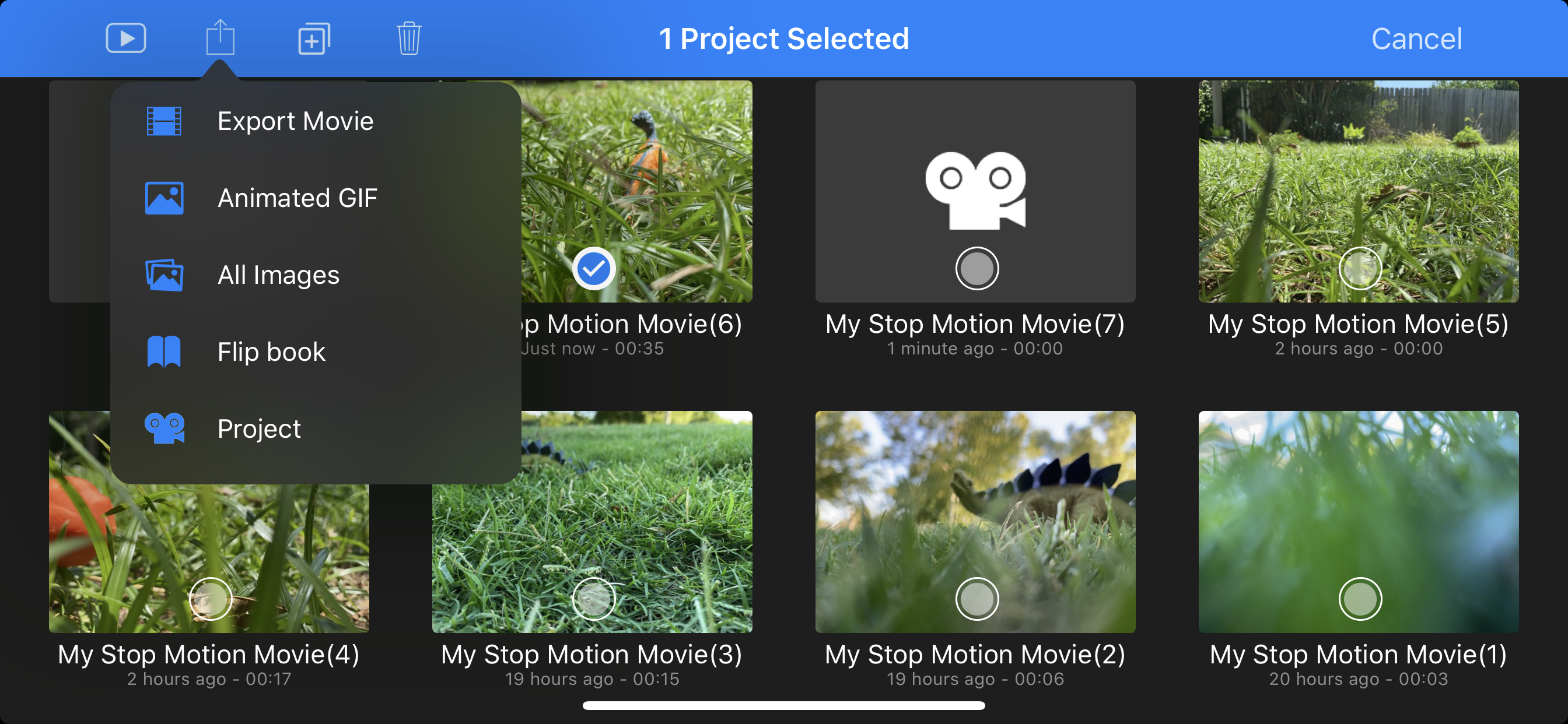 Screenshot from a stop-motion animation app shows a series of thumbnail icons and a drop-down menu with the following options: Export Movie, Animated GIF, All Images, Flip Book, Project
