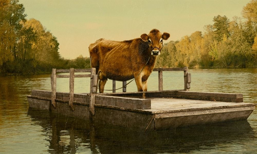 An image from the film First Cow depicts a cow on a wooden raft in a river
